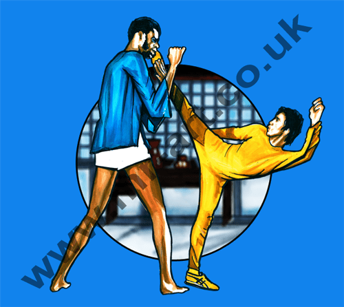 Bruce Lee Game Of Death T-Shirts and prints featuring artwork by Mark Reynolds. These are to Mr Art in a range of colours and sizes